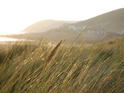 Sunset in the dunes at Croyde Bay